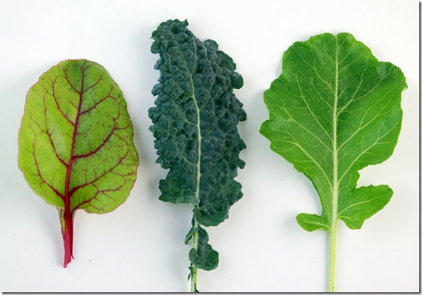 Dark-Leafy-Greens-Are-Good-Sources-of-Calcium
