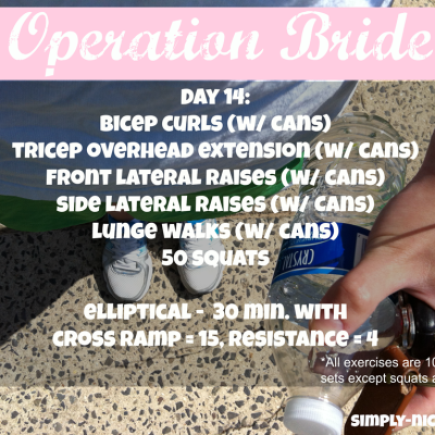 Operation Bride- Day 14