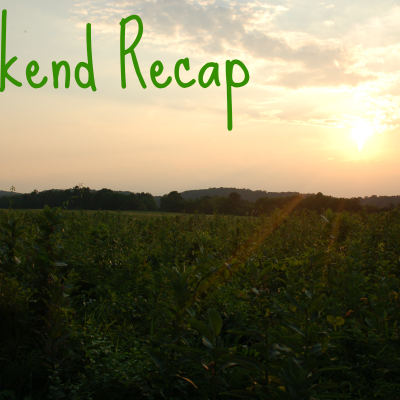 Weekend Recap (7/12- 7/13)