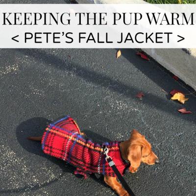 Pete's Fall Jacket
